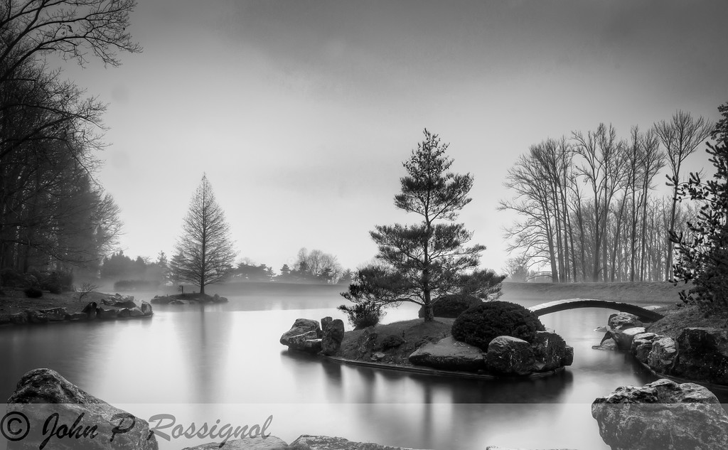 Rainy morning Dawes Arboretum Japanese Garden