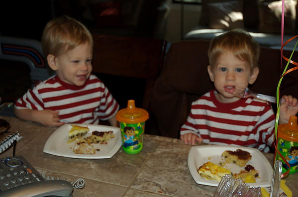 Isaac & Theo 2 to 3 years Old