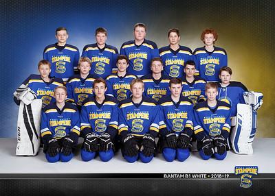 West Fargo Stampede Hockey