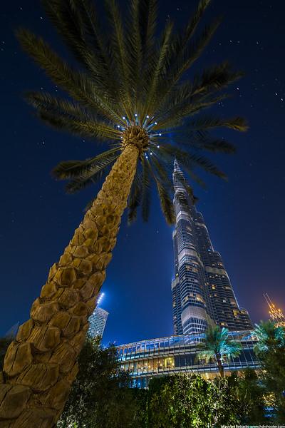 Dubai-IMG_0427-web.jpg