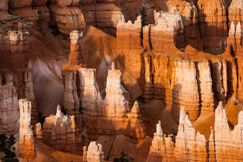 Rock formation in Bryce canyon national park - USA - Utah
