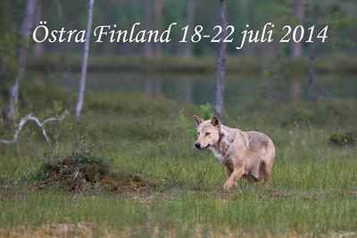 Östra Finland juli 2014