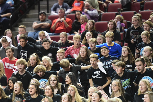 Crowd at State Volleyball