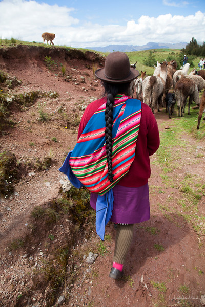 20120329_Cuzco_Tambo Machay_templeofthemoon_2250.jpg