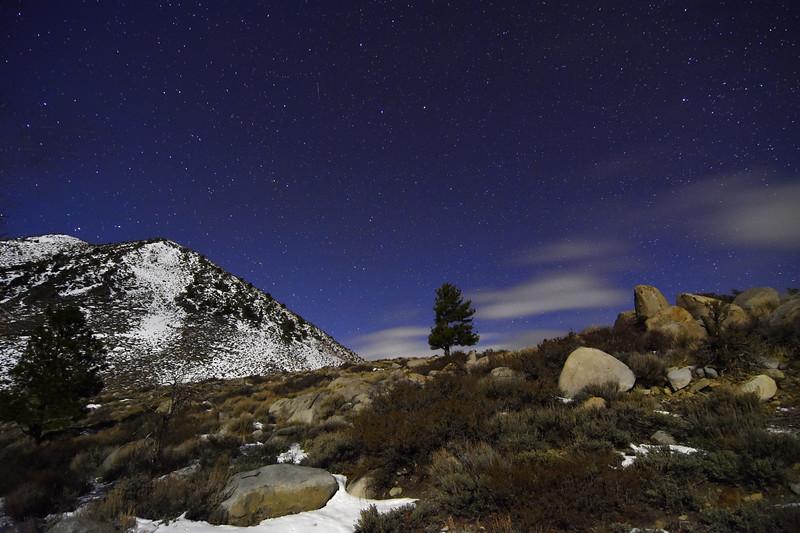 Starry, Moonlit Night
