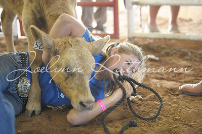 Calf Scramble - Sunday