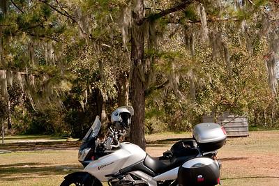 Exploring the Bayou Country