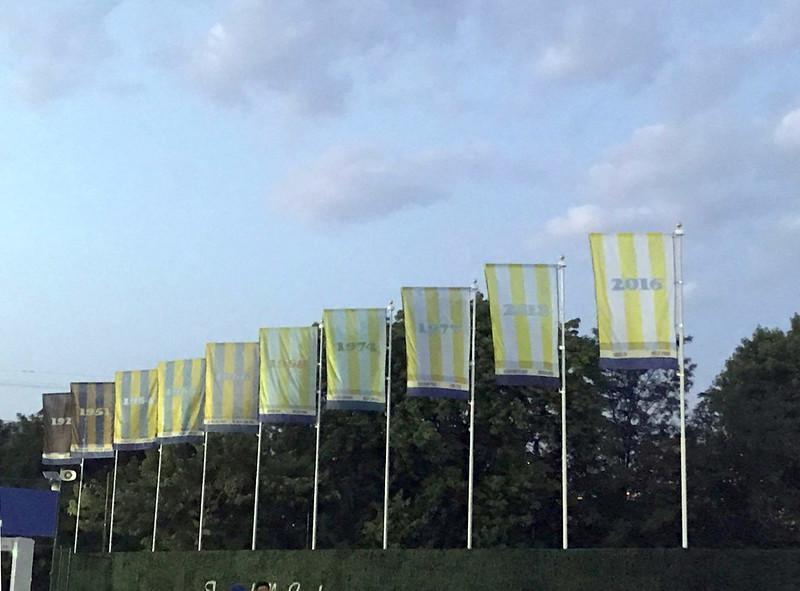 flags_1A.jpg