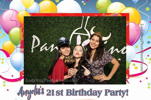 Anyelis's 21st Birthday Party