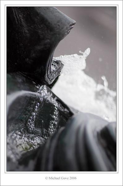 Water pearls (68610033).jpg