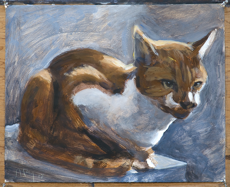Cat (O'Malley); acrylic on paper, 17 x 21 in, 2017