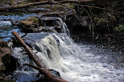 Ricketts Glen PA