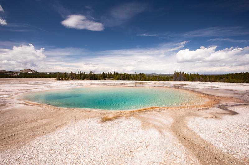 WVWS_Yellowstone-2190.jpg