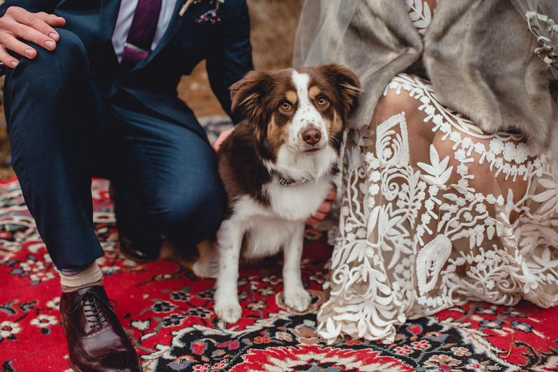 Requiem Images - Luxury Boho Winter Mountain Intimate Wedding - Seven Springs - Laurel Highlands - Blake Holly -1332.jpg