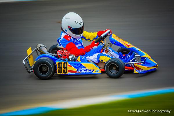 Irish Karting Club - Round 2 2014 - Alyx Coby