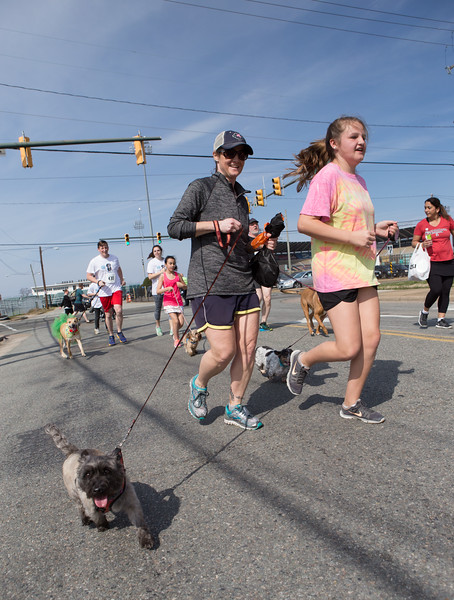 15thRichmondSPCADogJog-448.jpg