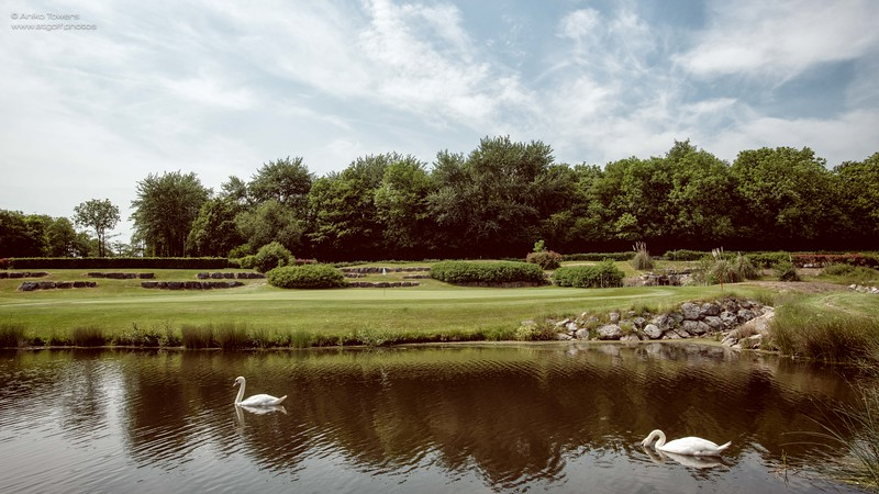 AT Golf Photos by Aniko Towers Vale Resort Golf Course Wales National-50.jpg