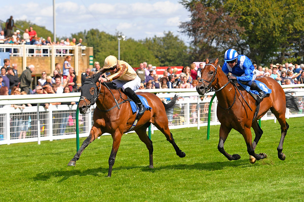 Tattersalls Sovereign Stakes & Summer Holiday Family Races, Hors