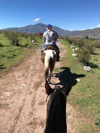 Tafi Horseriding