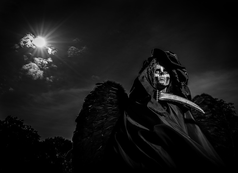 photographer-in-kingston_Ian-Trayner-0347_bw.jpg