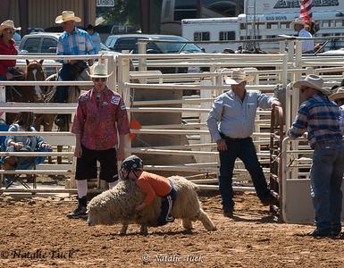 Rodeo kid sheep riders