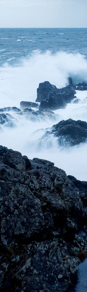 60x200 Panoramic BC Nature Images - Vertical