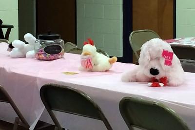 2014 02-18 SPCA party