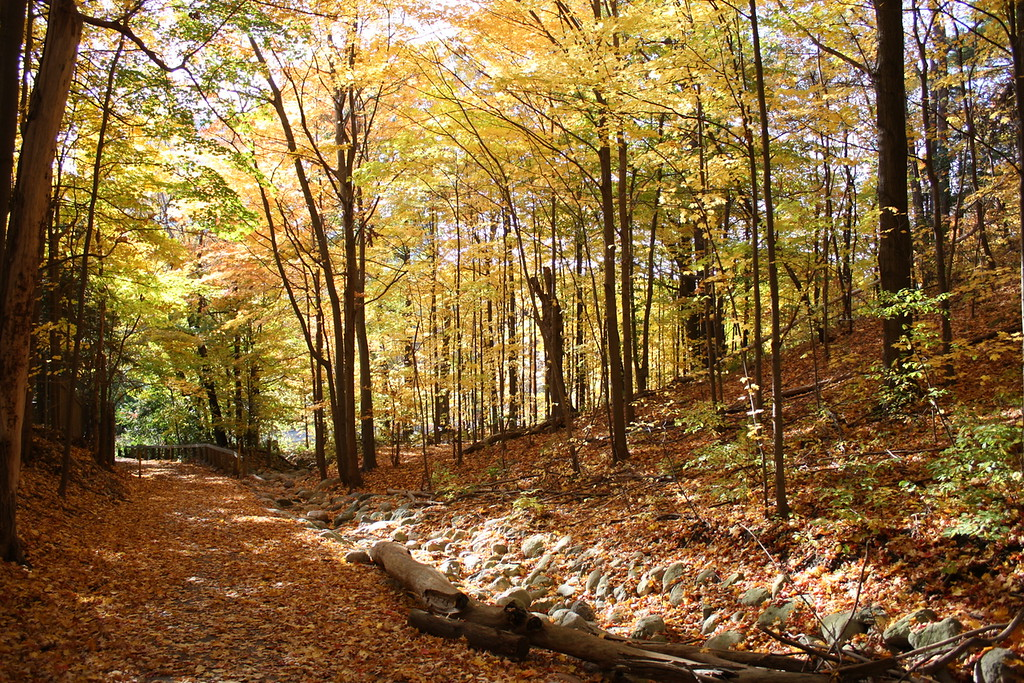 West Don Parkland - Hikes in Toronto
