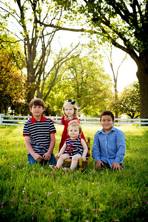 Palsa family