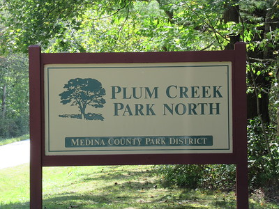 Plum Creek 09-2019