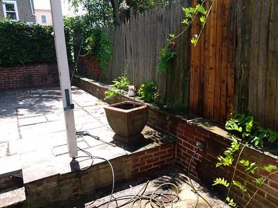 Yard pressure washed: 3000 psi, 165 Markle str.