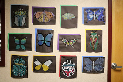 MS 8th Glue Bugs Art 4-19-19