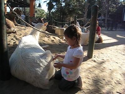 1/17 - At the Zoo with Grandma & Grandpa