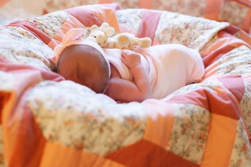 ALoraePhotography_BabyFinley_20200120_047.jpg