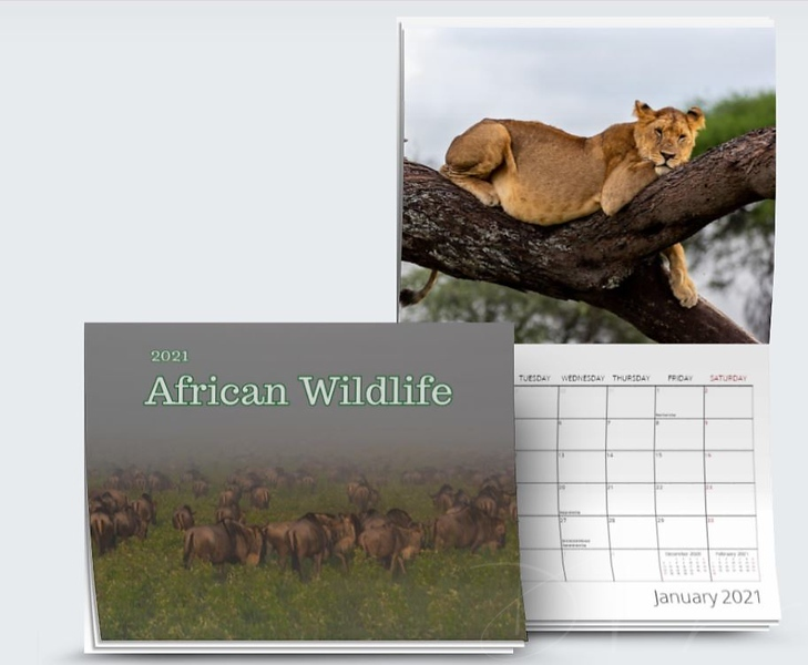 Calendar and Products