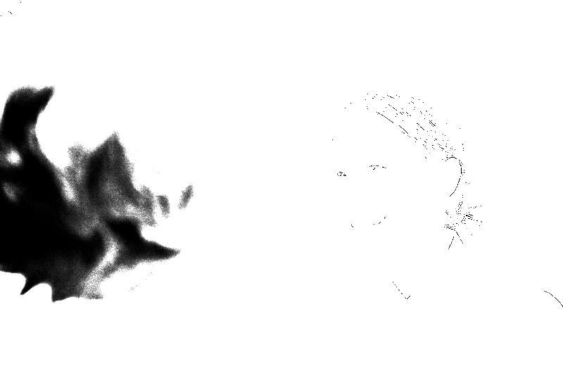 DSC05369.png