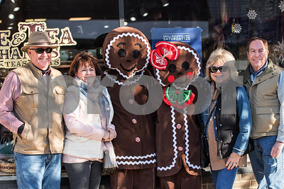 Downers Grove Gingerbread Festival 2017