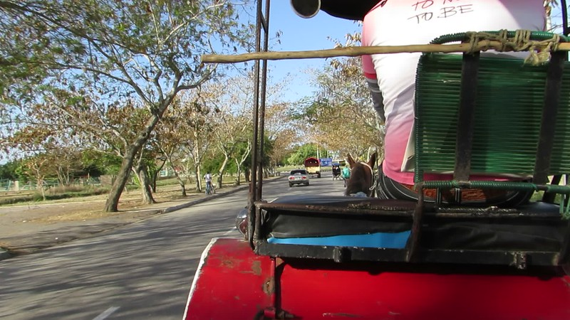 Carriage Ride to town -- clip-clop, clip-clop