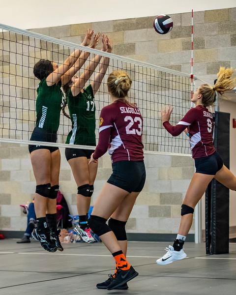 2018-Stvenson_Lady's_Volleyball-78.jpg