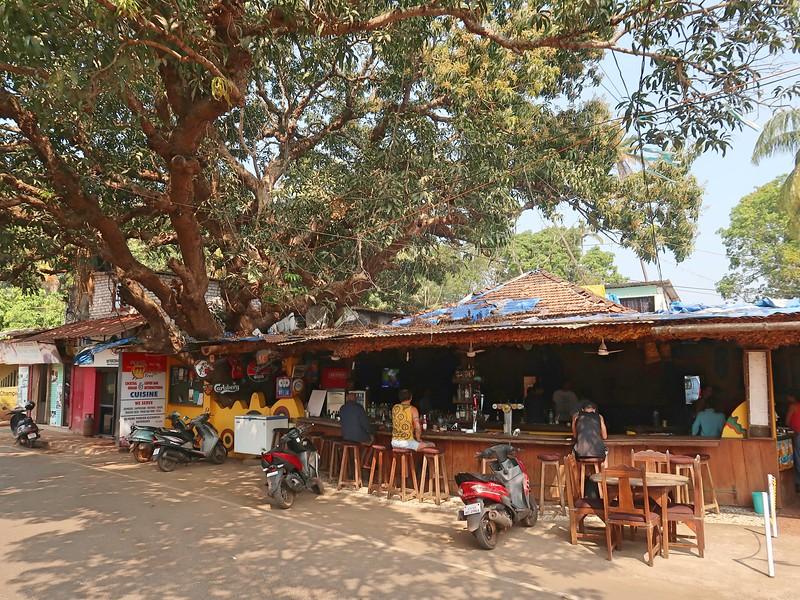 IMG_7727-the-mango-tree.jpg