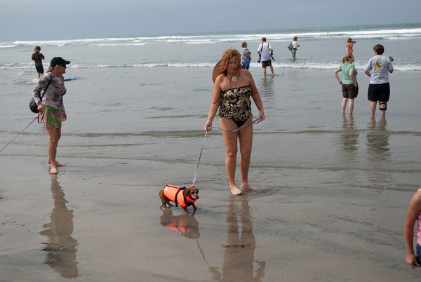 2009.09.13 Surf Dogs Del Mar
