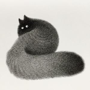 Gatos dibujados