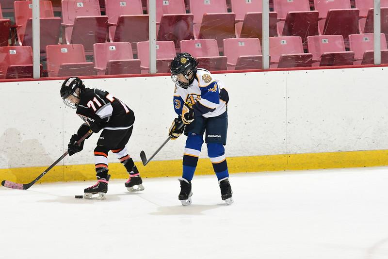 Orda-CANAM-CANAM Hockey 1980 Rink-id224951986.jpg