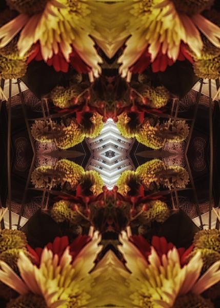 Mirror16-0006 5x7.jpg