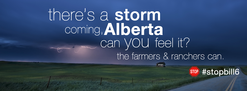 FB_Cover_StormComing_StopBill6.png