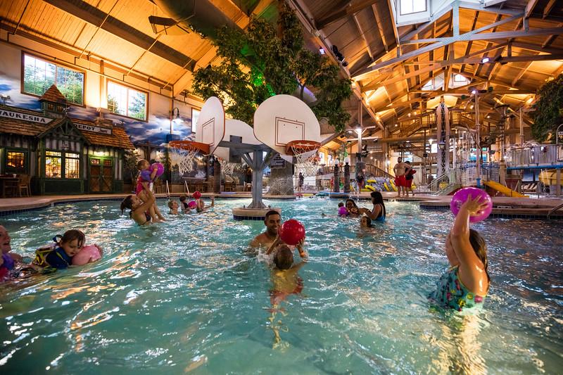 Country_Springs_Waterpark_Kennel-5513.jpg