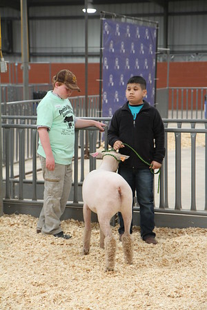 TGC Special Edition Livestock Show