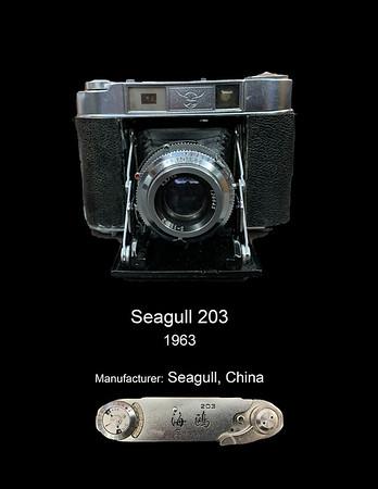 Seagull 203 - 1963 - Dec 26, 2020