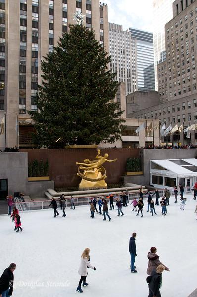 Rock Center Tree (74 ft)  & Ice Rink