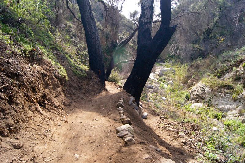 201201291640-El Prieto Trailwork.jpg